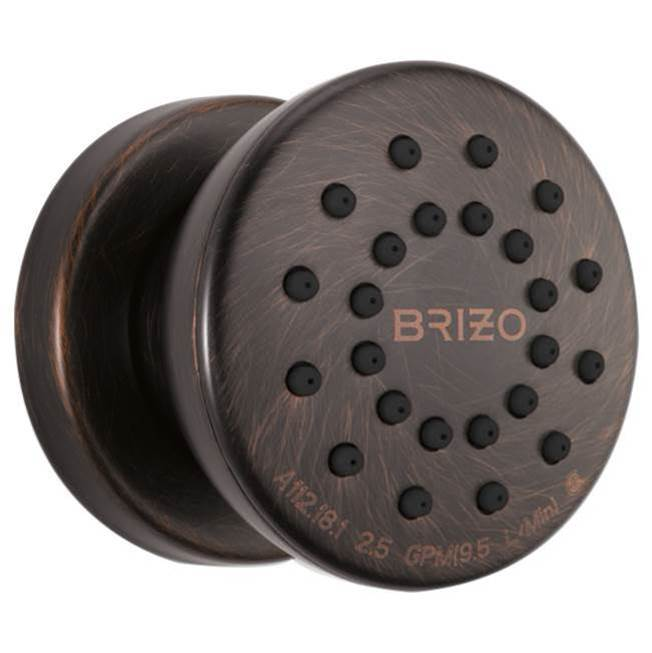 Brizo Bodysprays Shower Heads item 84110-RB