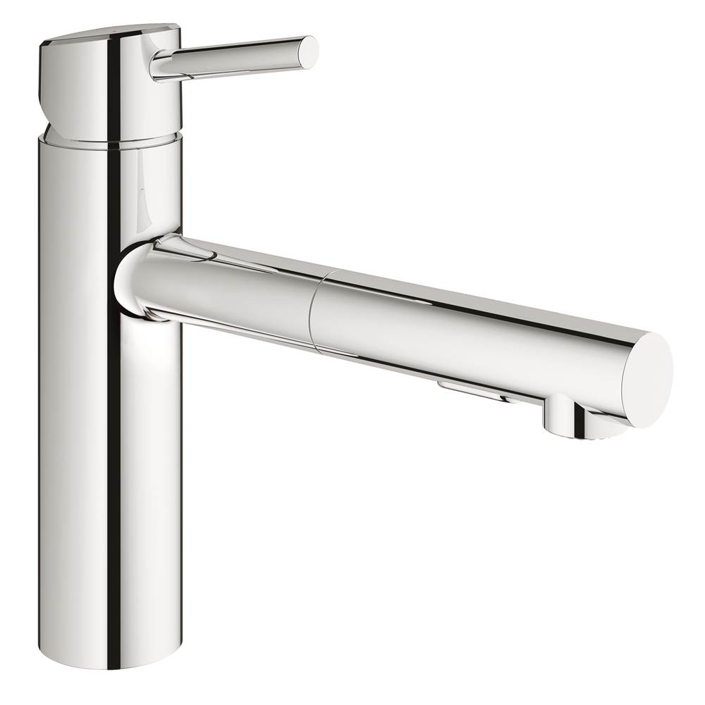 Grohe Retractable Faucets Kitchen Faucets item 31453001