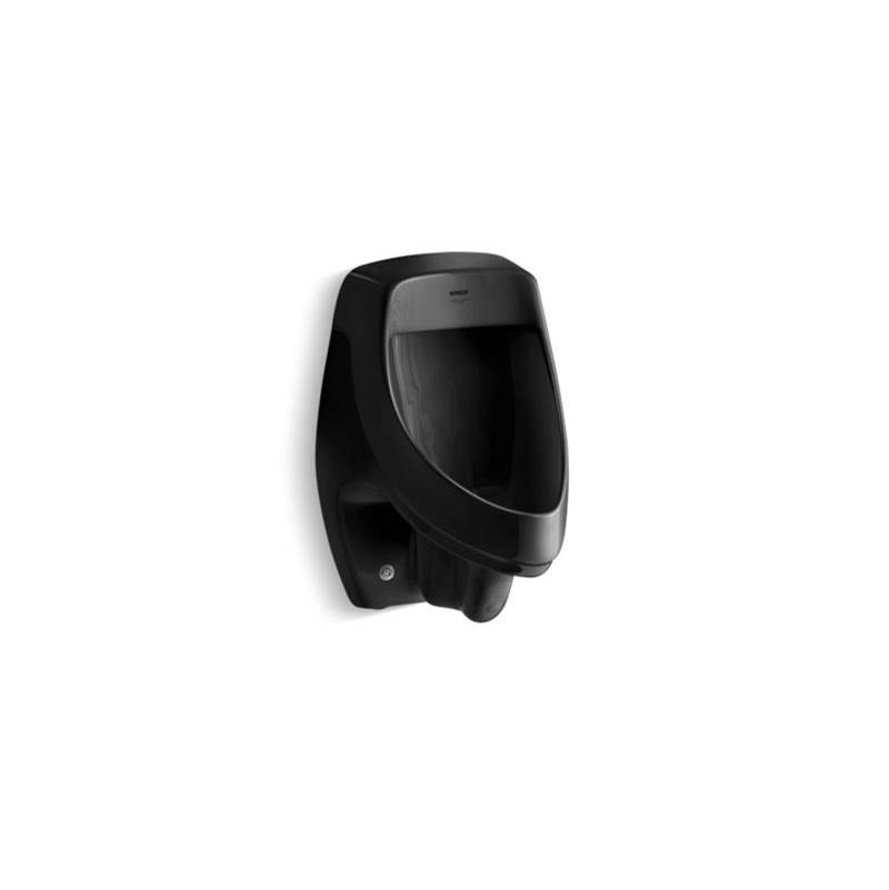 Kohler Wall Mount Urinals item 5016-ER-7