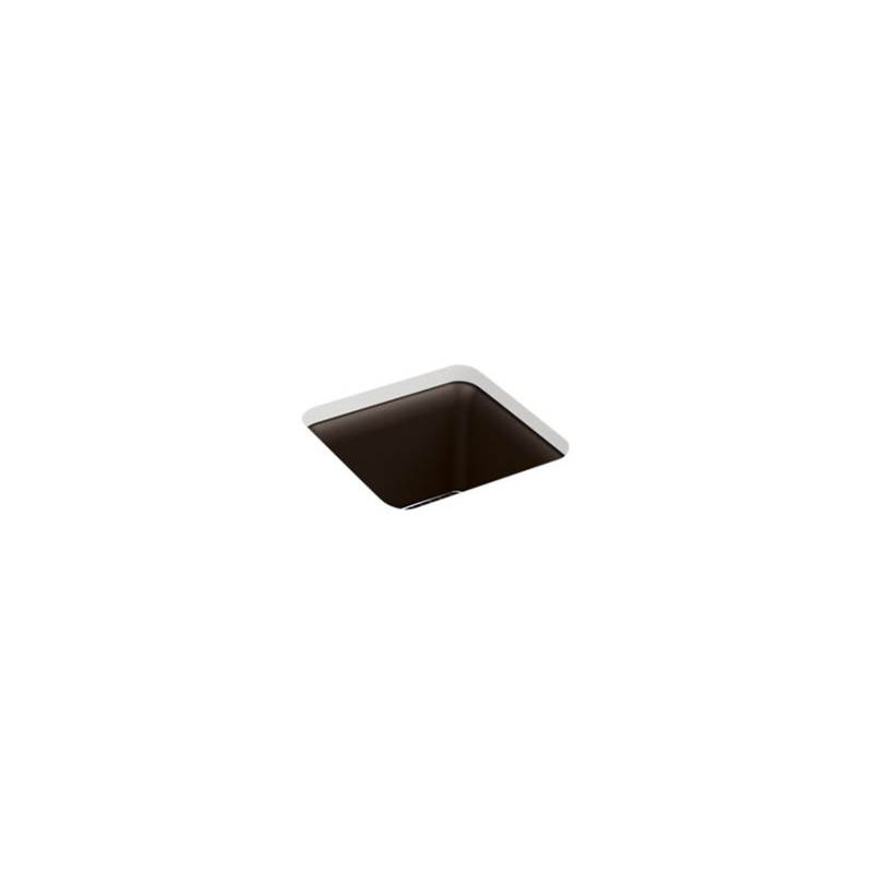 Kohler Undermount Kitchen Sinks item 8223-CM2